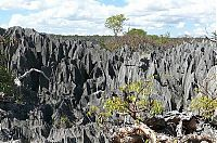Trek.Today search results: Stone Forest in Madagascar, Manambulu - Bemaraha