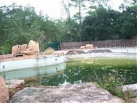 World & Travel: The abandoned water park in Walt Disney World, United States