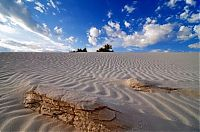 Trek.Today search results: White Sands National Monument, New Mexico, United States