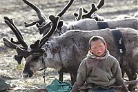 Trek.Today search results: Life of Siberian reindeer herders, Yamal, Russia.