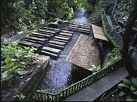 Trek.Today search results: Villa Escudero Plantations, Labasin waterfalls, San Pablo, Laguna & Quezon province, Philippines