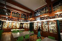 Grant Museum of Zoology and Comparative Anatomy, University College London, England, United Kingdom