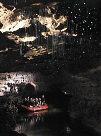Trek.Today search results: Waitomo Glowworm Caves, Waitomo, North Island, New Zealand