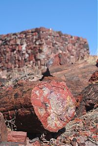 Petrified Forest National Park, Navajo, Apache, Arizona, United States