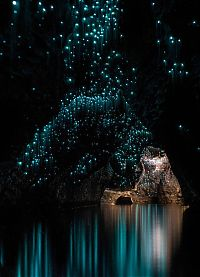 Waitomo Glowworm Caves, Waitomo, North Island, New Zealand