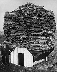 History: World War II photography, Anderson shelter